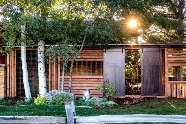 catio photo of outdoor cat enclosure