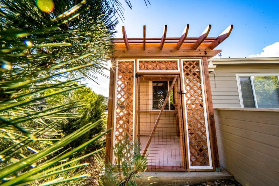 catio by cat topia in fort collins colorado