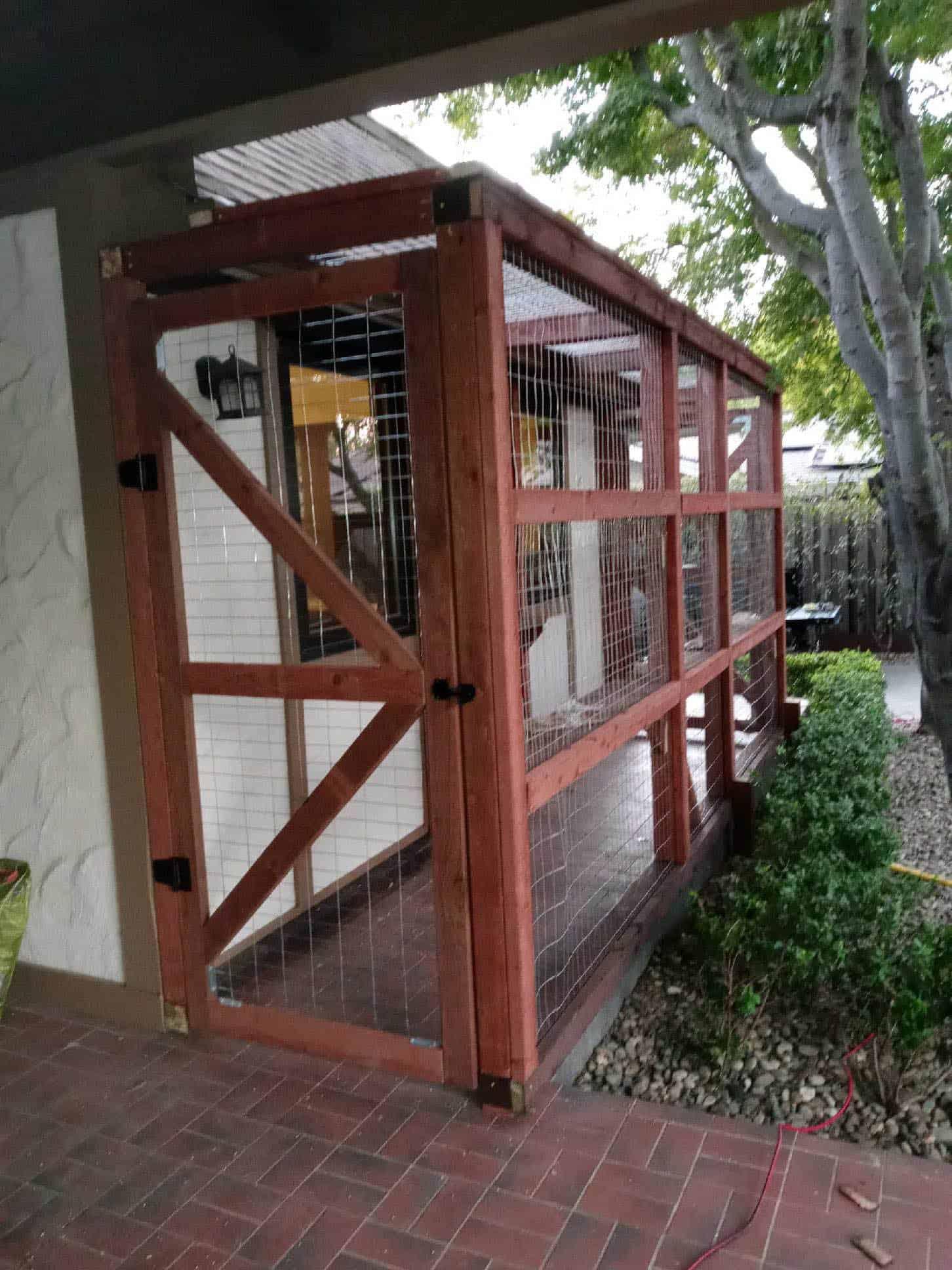cat patio in california