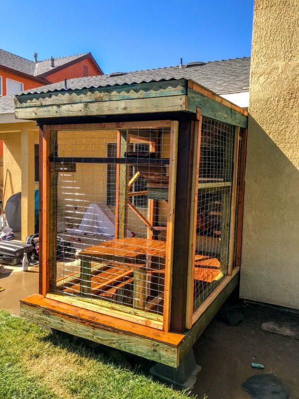outdoor cat enclosure in fresno california